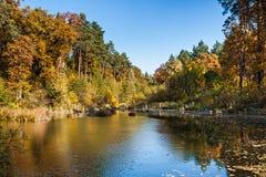 Mooie scène bij bosmeer Het landschap van de herfst Kleurrijke bladeren in bos Royalty-vrije Stock Foto's