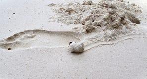 Mooie schoten van de witte stranden op het het paradijseiland van Seychellen met voetafdrukken en watergolven stock foto