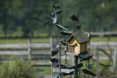 Mooie schoten van vogels in een vogelhuis stock afbeelding