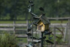 Mooie schoten van vogels in een vogelhuis royalty-vrije stock afbeeldingen