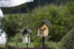 Mooie schoten van vogels in een vogelhuis royalty-vrije stock fotografie