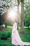 Mooie seksuele meisjes donkerbruine bruid in het lange beige van de huwelijkskleding in aard, in een Park met bomen, berken, witt royalty-vrije stock afbeeldingen