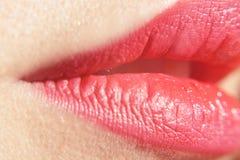 Mooie sexy lippen roze grote lippen - close-up De make-up mooie vrouwelijke mond van de close-up perfecte natuurlijke lip Mollige royalty-vrije stock afbeeldingen