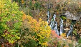 Mooie Shirahige-Waterval in bos op de herfstseizoen royalty-vrije stock foto
