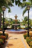 Mooie Sier Tropische Tuinen Stock Foto's