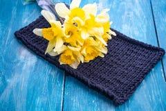 Mooie sinaasappel, geel, nartsysy de lente stock afbeeldingen