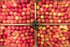 Mooie smakelijke fruit rode achtergrond met rode appelen in a.c. Stock Afbeelding