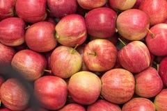 Mooie smakelijke fruit rode achtergrond met rode appelen in a.c. Stock Fotografie