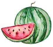 Mooie Smakelijke Smakelijke Watermeloenplak met Rood Sappig Vlees royalty-vrije illustratie