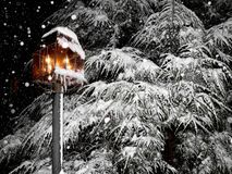 Mooie, sneeuw de winterscène Royalty-vrije Stock Fotografie