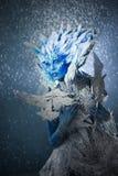 Mooie sneeuwkoningin Stock Afbeeldingen