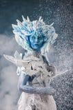 Mooie sneeuwkoningin Stock Foto's