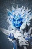 Mooie sneeuwkoningin Stock Foto
