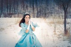 Mooie Sneeuwkoningin in de Winterdecor stock fotografie