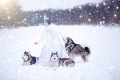 Mooie sneeuwkoningin met honden stock foto