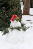 Mooie sneeuwman Stock Fotografie