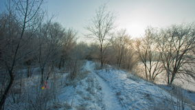 Mooie Sneeuwochtend stock video