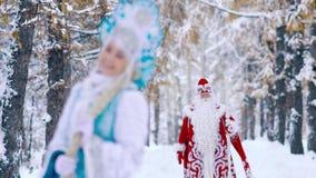 Mooie Sneeuwvlok die zich in de winterbos bevinden en op Vader Frost wachten stock video