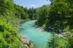 Mooie Soca-riviervallei in de zomer, Slovenië Stock Afbeeldingen