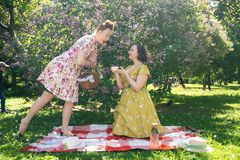 Mooie speld twee op dames die aardige picknick in het stadspark hebben in een zonnige dag samen de meisjesvrienden genieten van h stock foto