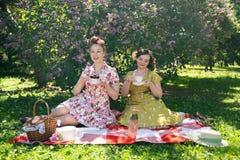 Mooie speld twee op dames die aardige picknick in het stadspark hebben in een zonnige dag samen de meisjesvrienden genieten van h royalty-vrije stock afbeeldingen