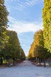 Mooie steeg op de lagere boulevard van Champs Elysees royalty-vrije stock foto