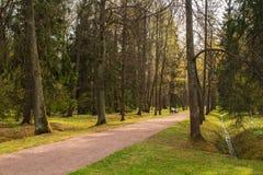 Mooie stegen van het oude die park, met zonlicht worden overstroomd royalty-vrije stock fotografie