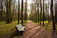 Mooie stegen van het oude die park, met zonlicht worden overstroomd stock afbeeldingen