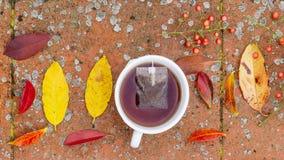 Mooie stillevensamenstelling met een kophoogtepunt van theebessen en herfst-gekleurde bladeren stock fotografie