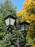 Mooie straatlantaarns op de achtergrond van de herfst gele bladeren Stock Foto