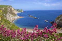 Mooie stranden van Dorset, het UK stock afbeeldingen