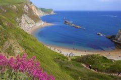 Mooie stranden van Dorset, het UK royalty-vrije stock afbeelding