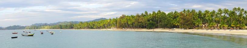 Mooie strandtoevlucht met vele kokospalmen Royalty-vrije Stock Foto