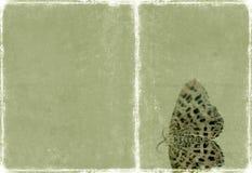 Mooie textuur als achtergrond Stock Foto