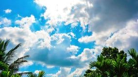 Mooie time lapsevideo van witte pluizige wolken die zich over de blauwe hemel bewegen stock video