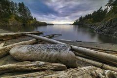 Mooie toneelscapes van Vancouver en Fraser Valley stock foto's