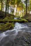 Mooie toneelscapes van Vancouver en Fraser Valley stock afbeeldingen