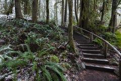 Mooie toneelscapes van Vancouver en Fraser Valley Scenic Backgrounds royalty-vrije stock foto's