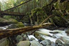 Mooie toneelscapes van Vancouver en Fraser Valley Scenic Backgrounds stock foto's