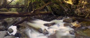 Mooie toneelscapes van Vancouver en Fraser Valley Scenic Backgrounds royalty-vrije stock foto