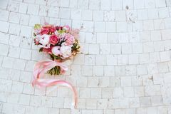 Mooie tot bloei komende bloemen royalty-vrije stock foto