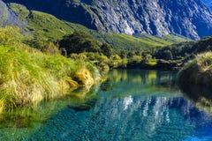 Mooie transparante stroom in een vallei stock afbeelding