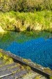 Mooie transparante stroom in een vallei royalty-vrije stock fotografie