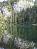 Mooie trekking door tovelmeer in Trentino royalty-vrije stock fotografie