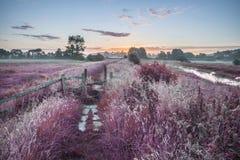 Mooie trillende de Zomerzonsopgang over Engels platteland landsc Stock Foto