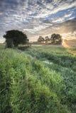 Mooie trillende de Zomerzonsopgang over Engels platteland landsc Stock Afbeelding