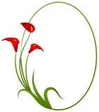Mooie tropische lillies stock illustratie