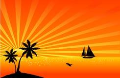 Mooie tropische scène Stock Foto's