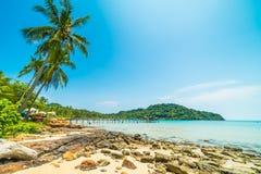Mooie tropische strand en overzees met kokosnotenpalm in parad Stock Foto
