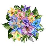 Mooie tropische van bloemen heldere aquilegia en monstera bladeren Ronde bos van akeleibloemen en exotische bladeren Royalty-vrije Stock Fotografie